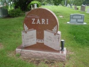 Example 11: Zari